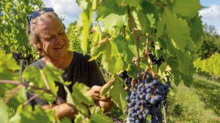 Bibi Gratez – den geniale vinkunstneren i Toscana