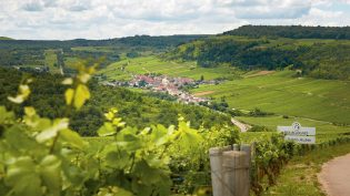 Burgund del 2